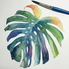 "128 Likes, 3 Comments - Henry Baker (@hennerzartwork) on Instagram: ""Simple yet delicate // picoftheday #instaart #art #artgram #monstera #deliciosa #plants…"""