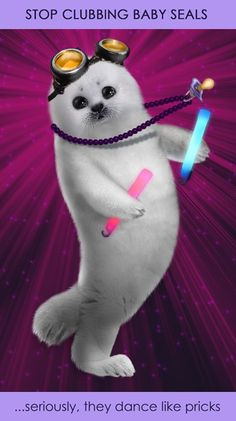 Clubbing baby seal 2 by humon Baby Seal, Happy Fun, Nerd Geek, My Animal, Tumblr Funny, Laugh Out Loud, Make Me Smile, I Laughed, Nerdy