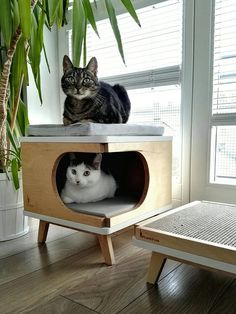 Modern cat house made from plywood in scandinavian design | Etsy