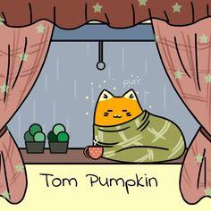 Tom Pumpkin