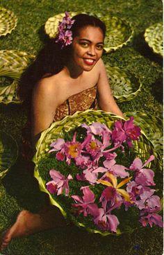 Vintage Hawaiian postcard.
