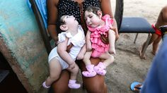 Scientists predicted that more than 1000 babies would be born with the birth defect in Brazil last year. That never happened. Zika Virus, Science Fair, Scientists, Brazil, Birth, Babies, Shit Happens, Soda, Goats