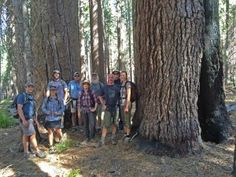 The Bigfoot Trail Alliance joined forces with the Salmon River Restoration Council to hike up Russian Creek in the Russian Wilderness. Crescent City, Bigfoot, Pacific Ocean, Northern California, Hiking Trails, Long Distance, Wilderness, National Parks, Sugar