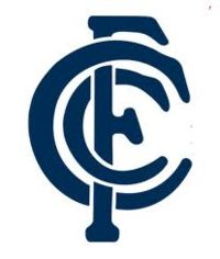 Founded in 1864, the Carlton footy club is one of the original 8 teams that entered the VFL/AFL. And they've worn that navy blue kit since day 1. With an iconic team logo and more than their share of accolades, the Carlton Blues are another one of those juggernaut clubs in the AFL that always draw crowds wherever they play!