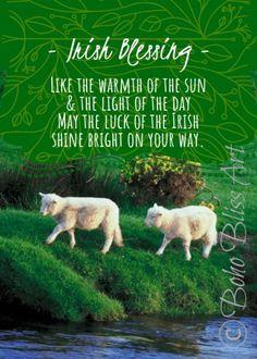 Irish Blessing: Like the warmth of the sun & the light of the day May the luck of the Irish shine bright on your way Ireland Quote Wall Art Irish Prayer, Irish Blessing, Old Irish, Irish Celtic, Immigration Quebec, Irish Quotes, Irish Sayings, Irish Toasts, St Patricks Day Quotes