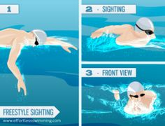 The easy way to 'Sight' in an Open Water Swim - Tips for Triathlon Open Water Swimming