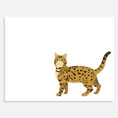 Set of Bengal Note Cards by uluckygirl on Etsy, $20.00