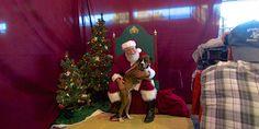 Did you see Santa at Boxerstock?