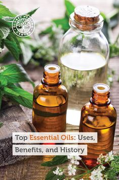 Essential oils are the oil-based aromatic extracts derived from the leaves, stems, fruit, bark, flowers, roots, or seeds of plants. They are a highly concentrated form of volatile oils—another name for essential oils—and have many beneficial properties.