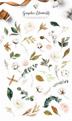 Watercolor Graphic Set-Magnolia&Cotton/Large set/Wedding/Individual PNG files/Hand Painted/wedding invitation/Autumn - New Ideas Watercolor Leaves, Floral Watercolor, Watercolor Wedding, Botanical Illustration, Watercolor Illustration, Logo Atelier, Red Bouquet Wedding, Magnolia Wreath, Graphic
