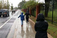Walk in the Rain, Flagstaff, AZ