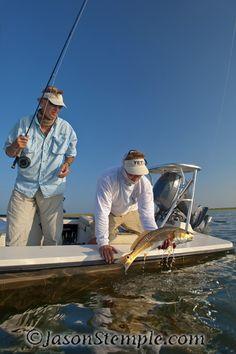 tailing tide flyfishing for redfish