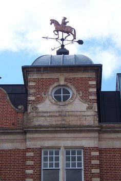 Erasmus Weathervane
