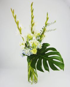 awesome vancouver florist Who needs fireworks? We say go the way of the peaceful warrior! #lovewhoyoulove #hydrangea #gladiolas #philodendron #eastvancouver #commercialdrive #flowerlove #vancouverflowers #yvr #vancouverflowershop #eventflorist #weddingflowers #weddingflorist #homedecor #decor by @studiofullbloom  #vancouverflorist #vancouverweddingdecor #vancouverflorist #vancouverwedding #vancouverweddingdosanddonts