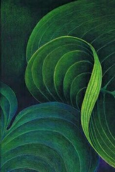 "Green - verde - leaves - folhas - "" Colored pencil on black drawing paper Helen Read Palette Verte, Painting & Drawing, Black Painting, Paper Drawing, Coloured Pencils, Colored Paper, Color Pencil Art, Patterns In Nature, Black Paper"