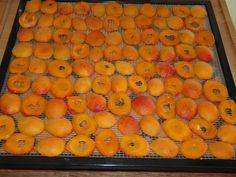 sargabarack_aszalas Vegetables, Fruit, Food, Essen, Vegetable Recipes, Meals, Yemek, Veggies, Eten