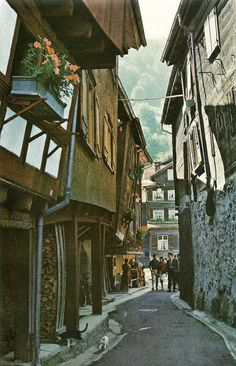 Slant walled houses on a twisting lane in Werdenberg, Switzerland National Geographic Winterthur, Zermatt, Travel Around The World, Around The Worlds, Great Places, Places To See, Slanted Walls, Swiss Alps, Rocky Mountains