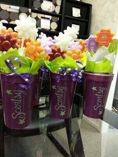 Scentsy flowers - Contact me today with all of your questions or for all of your Scentsy needs - https://kblount.scentsy.us - kablnt01@comcast.net - And it gets even better February is 10% off almost all of our products.