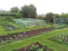 How to Garden Vegetables | It's a 'soft' day here - Structures in the Vegetable Garden