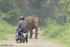 No te vas a creer como me he quedado sin la moto nueva…