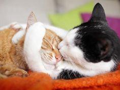 ..hugs