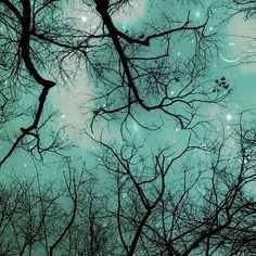Celestial photography Moon and Stars print Blue decor by Raceytay