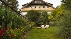 Haus am Weinberg: Das #BIOHOTEL Garni liegt am Ortsrand des bekannten Weinortes Achkarren im Kaiserstuhl und bietet Ihnen einen weiten Blick auf die umliegenden Weinberge und die nicht weit entfernten Höhenzüge der Vogesen.