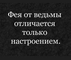 Truth Of Life, Jokes, Lol, Reading, Funny, Humor, Husky Jokes, Memes, Reading Books