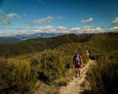 Walking up the Mt Thomas track to the summit. Day walks in Canterbury, New Zealand Adventure Photography, Canterbury, Walks, New Zealand, Track, Van, Photo And Video, Instagram, Runway