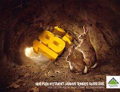 Creative Advertisements Using Animals - www.boostinspiration.com/advertisement/creative-advertisements/