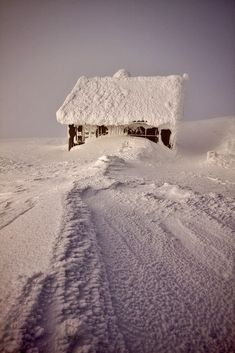 Now that is way to much snow! .