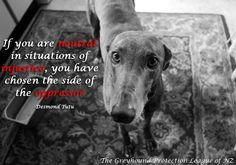 Greyhound Protection League of New Zealand