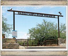 Hassayampa River Preserve, Wickenburg, Arizona