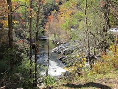 A hint of fall on Little River Road in the Smoky Mountains.