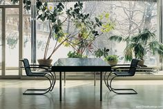 Interior of Tugendhat House, by Ludwig Mies van der Rohe, at Brno, Czech Republic, 1930. Furniture by Miles van der Rohe.