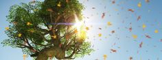 """"""" Freshness of a Summer Time """" a new image of this new album !! New album, new way of editing images, new way to convey you my emotion.   Thatt image is so fresh for me.. so beautiful , so relaxing ! I hope you like it :)  Rendered in 7750 x 2906"""
