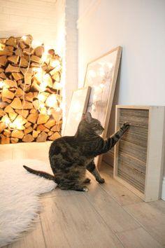 DIY Katzen Kratzbrett selber machen diy coole katzenmöbel selber machen; Katzenmöbel selbst machen, Katzenmöbel DIY, Katzenbett DIY selber machen, Katzenkorb DIY selber bauen, Katzenmöbel Balkon, Kratzbaum für Katzen selber bauen,