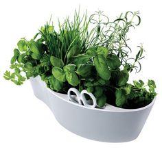 Herb Garden Flowerpot - Aromatic herb garden with scissors by Royal VKB