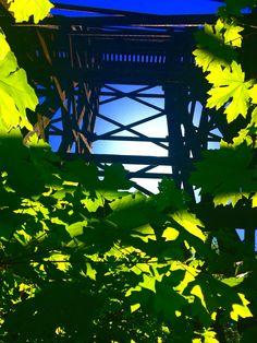 Train bridge-by Tamara Slager