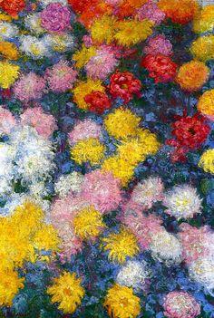 Crisantemos - Claude Monet (1840 - 1926) Óleo sobre lienzo. Chrysanthemums - Claude Monet (1840 - 1926) Oil on canvas.