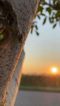 Photo Background Images, Photo Backgrounds, Beautiful Photos Of Nature, Amazing Nature, Sunrise Photography, Landscape Photography, Aesthetic Photography Nature, Nature Photography, Cool Instagram