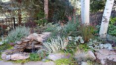 Plumbago, variegated iris, Agastache 'Sunset', Heuchera 'Palace Purple', Lavandula 'Hidcote', Lysimachia nummularia 'Aurea'Revisiting Sheila's garden in Colorado, Day 1 | Fine Gardening