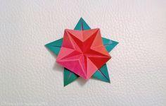 Fleur géométrique