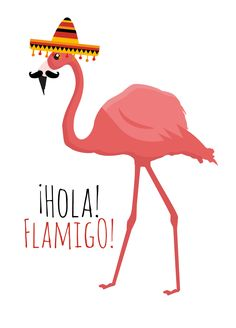 Cards to spread some cheer - #Flamingo #Hola