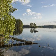 Canvas print - Swedish Lake Landscape