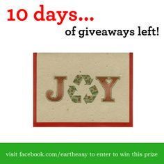Day 3: Joy to the world...  Enter to win the following 'Grow A Note Cards' from Eartheasy.com on Facebook.  Check back daily now until December 25th for more great giveaways!