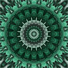 10% RABATT auf das gesamte Sortiment! Code: HAPPY10 – gültig nur heute Poster Mandala Dschungel von Christine Bässler