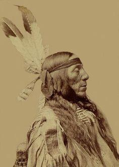 Lean Wolf aka Cheshakhadakhi aka Tcecaqadaqic - Hidatsa  y: