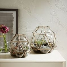 So natural, yet very chic & glamourous. Terrariums are amazing! Brass Cage Terrariums #westelm