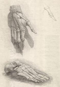 Анатомический рисунок – МАХУ Gcse Art, Art Reference Poses, Pencil Drawings, Anatomy, Drawing Stuff, Painting, Lost, Anatomy Art, Sketches